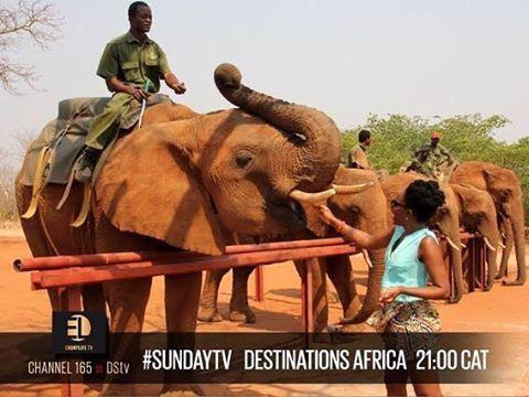 Peep #DestinationsAfrica for your #SundayTV pleasure: Sunday, 21:00 CAT on #DSTV #ELTV #WakaNow  @ebonylifetv @wakanowdotcom