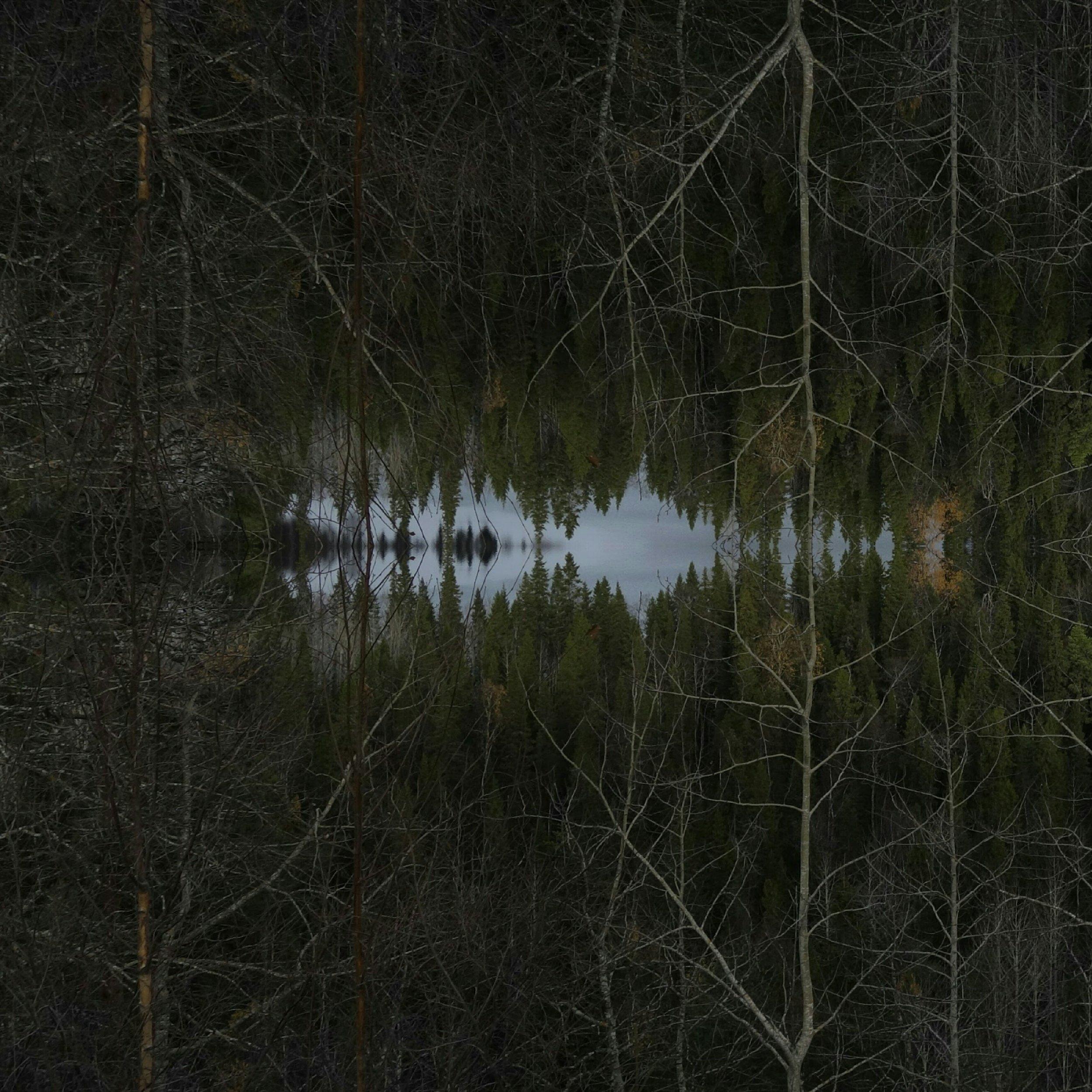 703096134_mirror.jpg