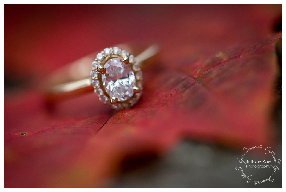 Hobbitland Engagement in Hallowell Maine by Maine Wedding Photographers -