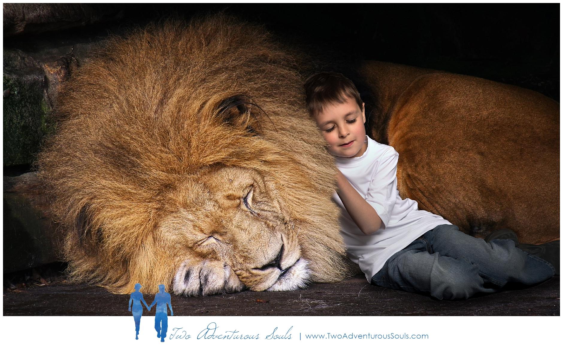 Lion Composite, Maine Children's Fantasy and Fine Art Photographers