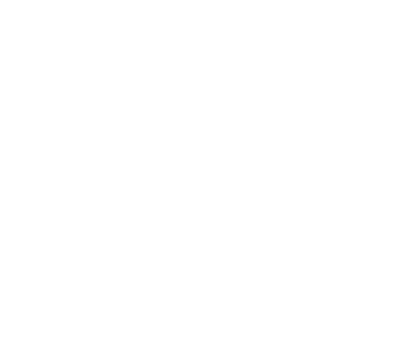 NPUInitiative_white.png