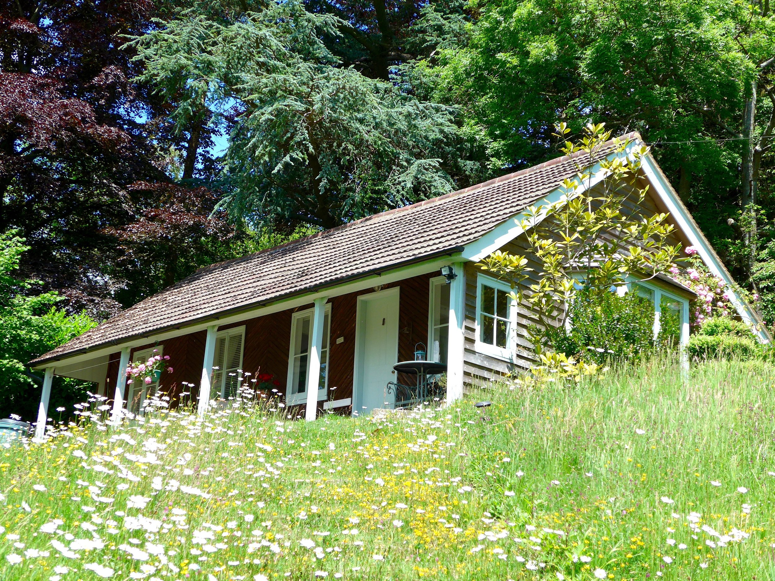 The Cottage in its summer meadow