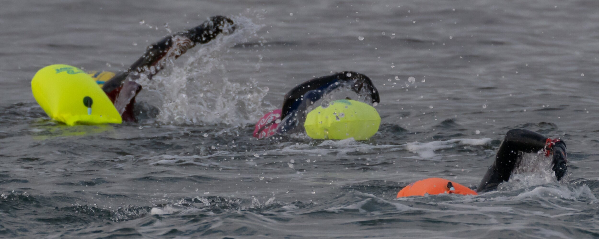 6 Open Water Swim Workouts For All Levels