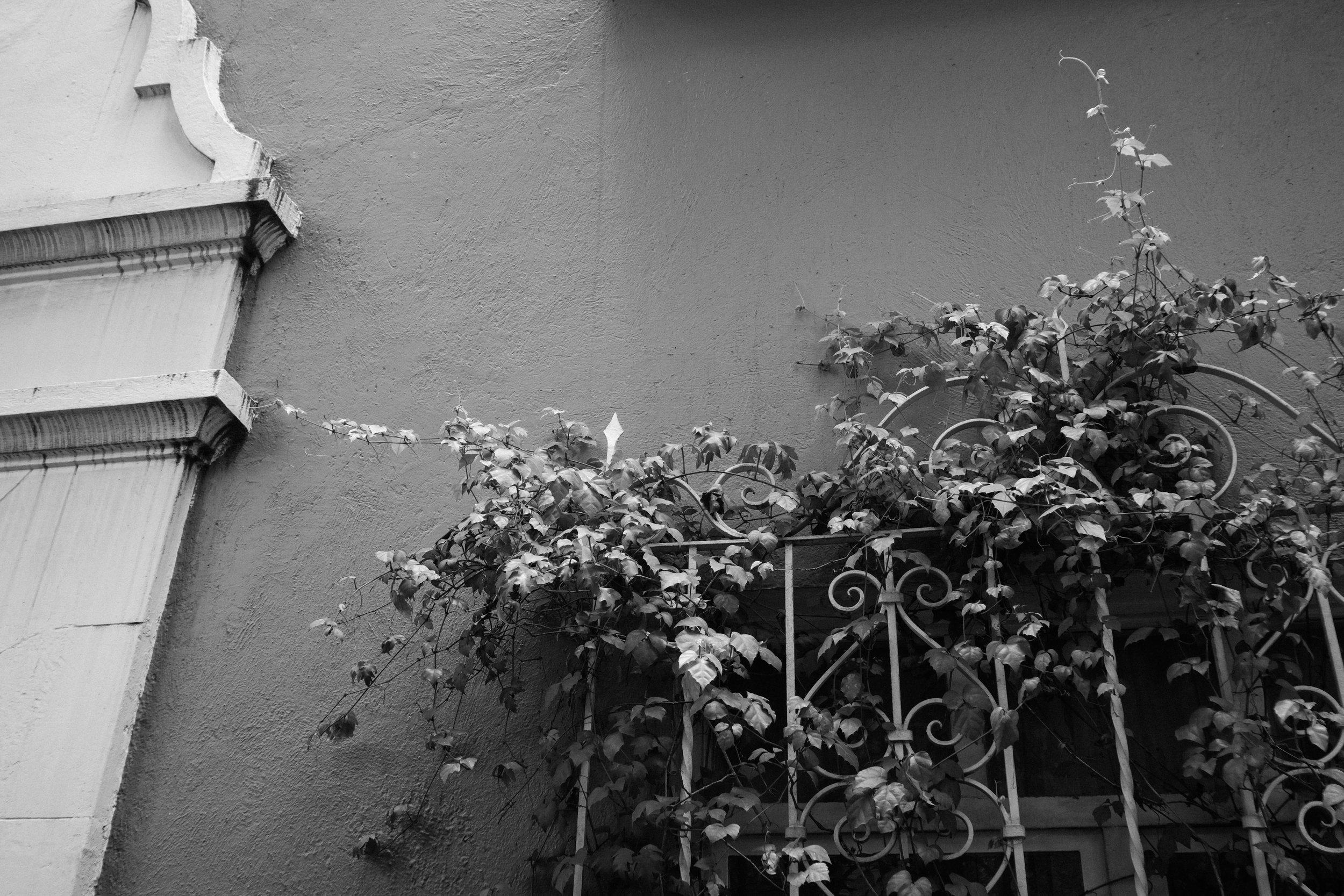 Mexico City Street Photography-1-20.jpg