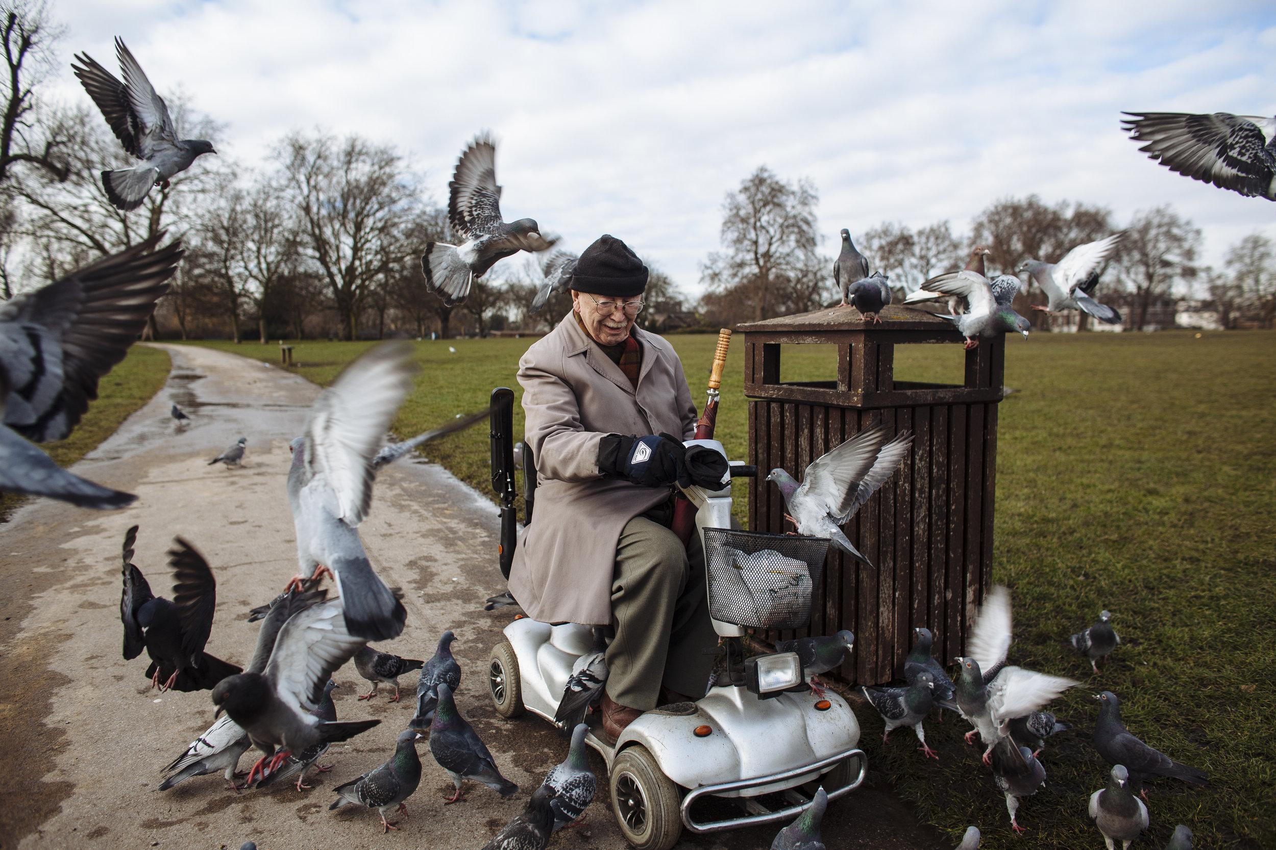 An elderly man feeds birds in Regents Park, London, Wednesday, Feb. 11, 2009. (AP Photo/David Azia)
