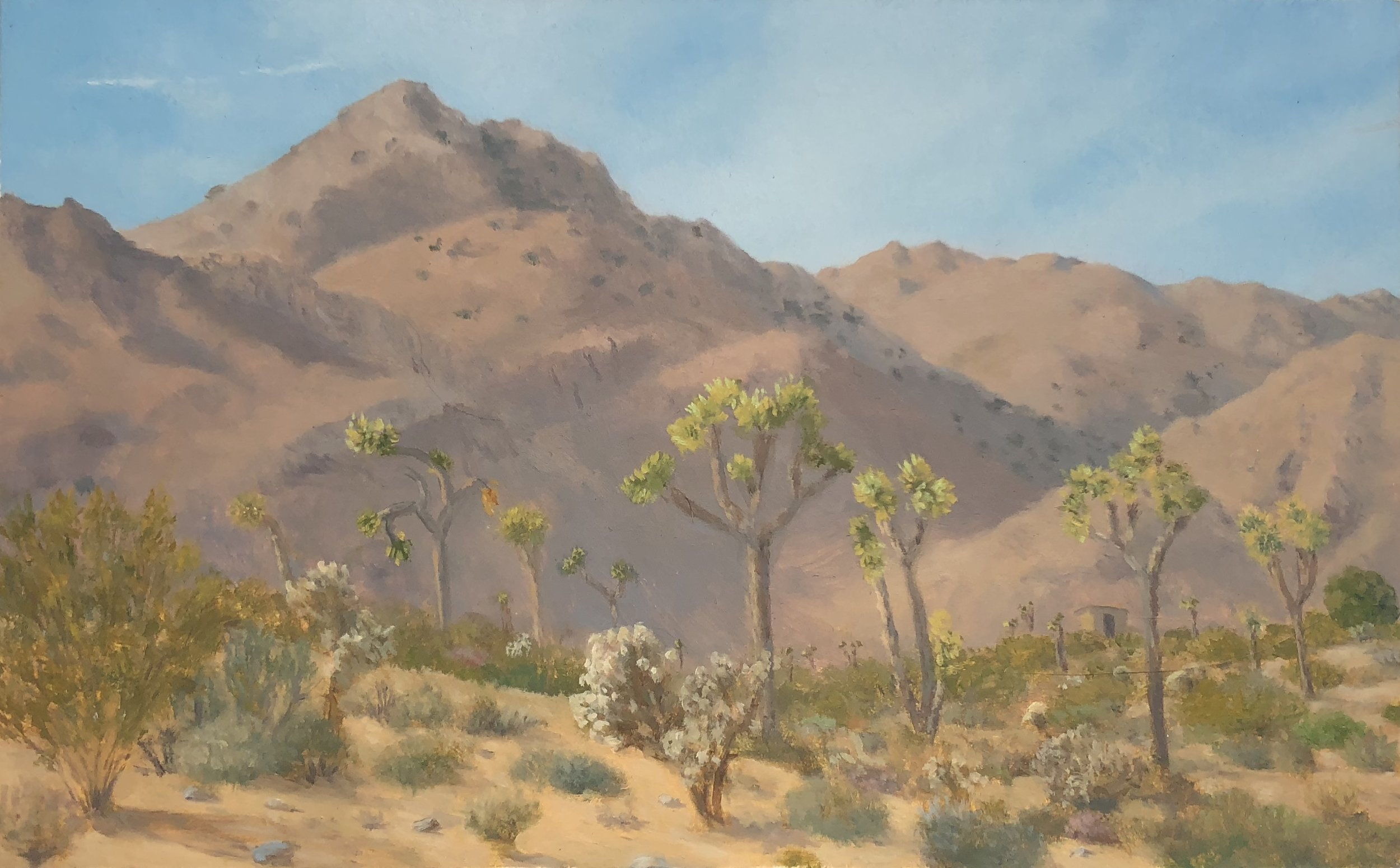 Joshua Tree Side Yard Oil on panel 5 1/2 by 8 inches 2017