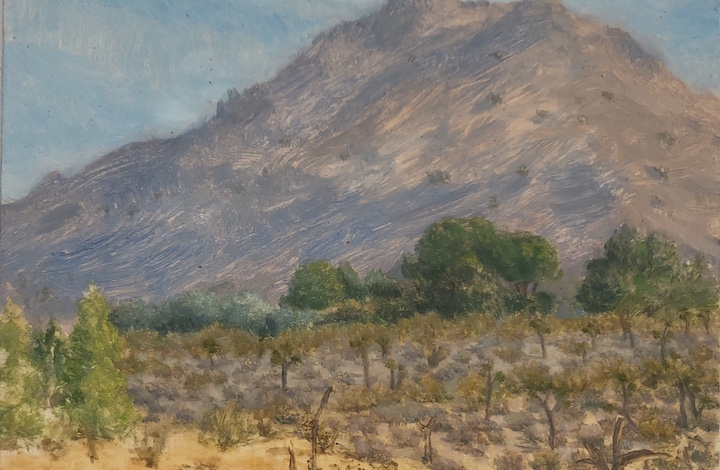 Joshua Tree Back Yard Oil on panel 3 by 5 inches 2017