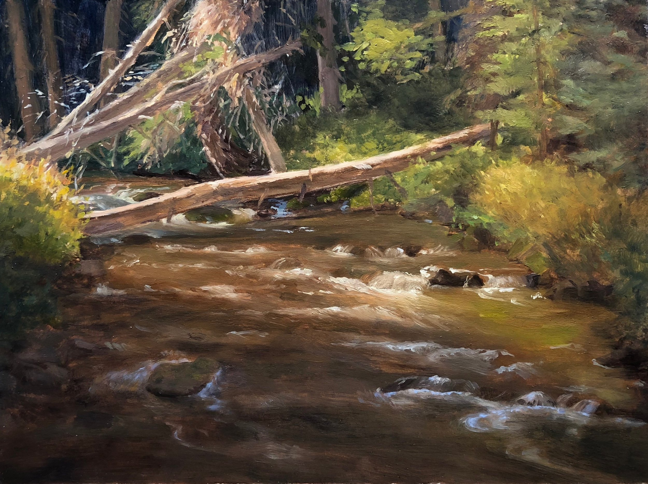 Flat Creek in the Forest 2018 6 by 8 inches Oil on paper mounted on panel