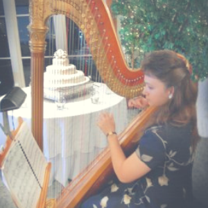 Harp Music by Judy Website Images (18) (1).png