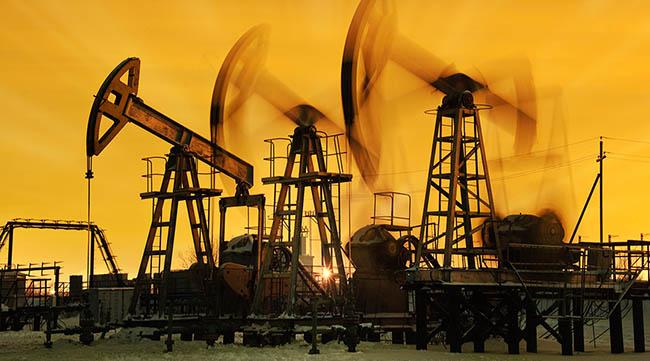 oil02.jpg