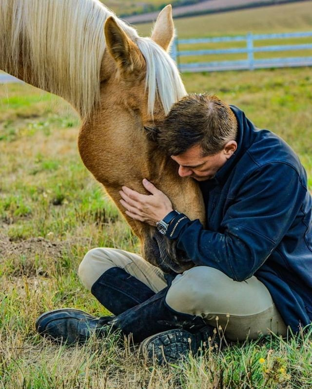 """Those that teach us the most about humanity aren't' always human."" --Donald Hicks #equuscoaching#healingwithhorses#horsesofinstagram#leadership#culture#corporatewellnes#workplacewellness#workplacewellbeing#employeeengagement#personaldevelopment#pathfindrcoaching#koelleinstitute#equuscoaching"