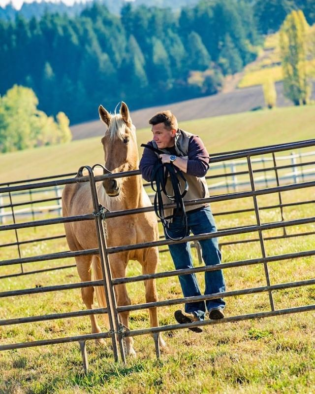 """""""No philosophers so thoroughly comprehend us as dogs and horses."""" --Herman Melville #equuscoaching#healingwithhorses#horsesofinstagram#leadership#culture#corporatewellnes#workplacewellness#workplacewellbeing#employeeengagement#personaldevelopment"""