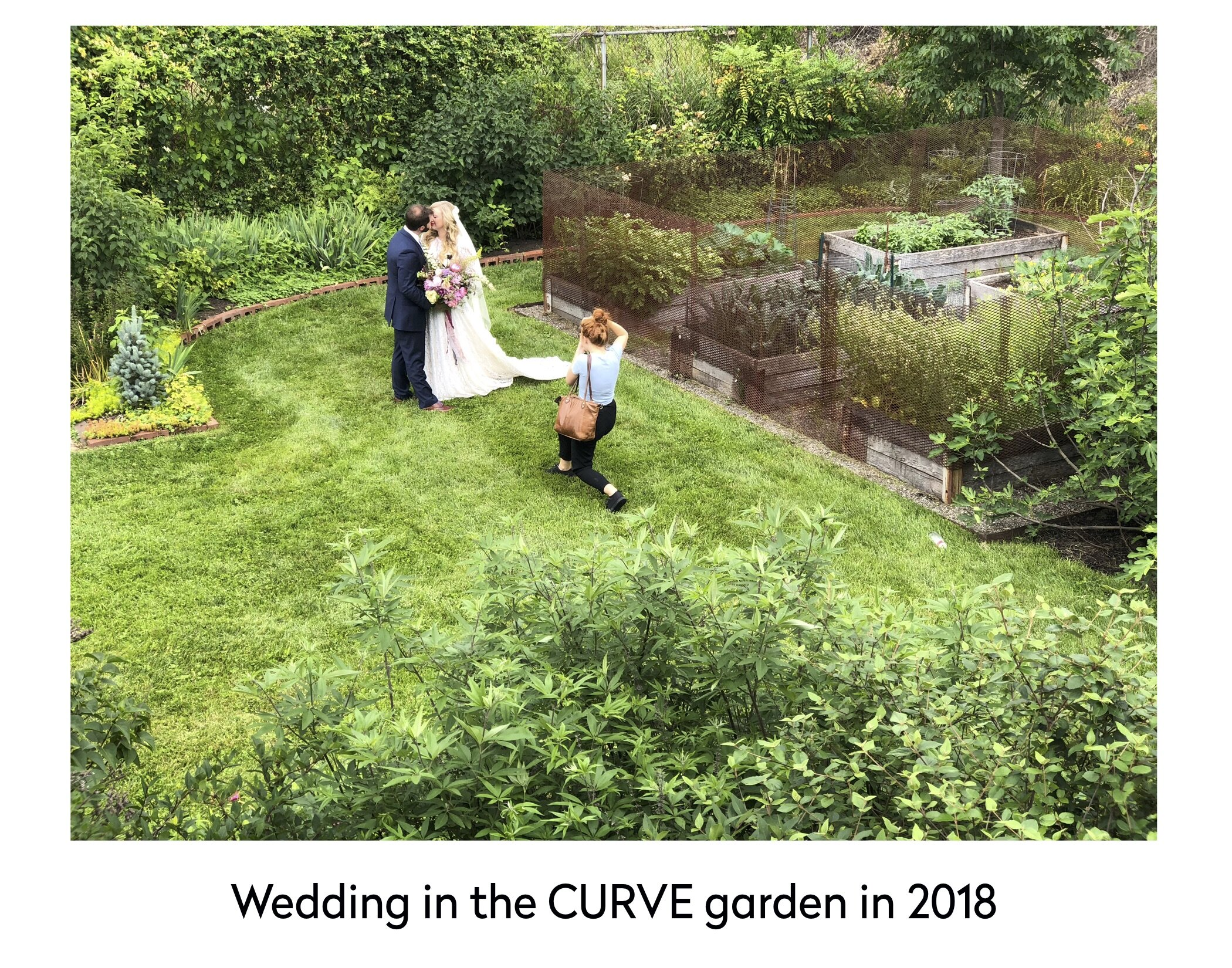 wedding curve garden 2018.jpg