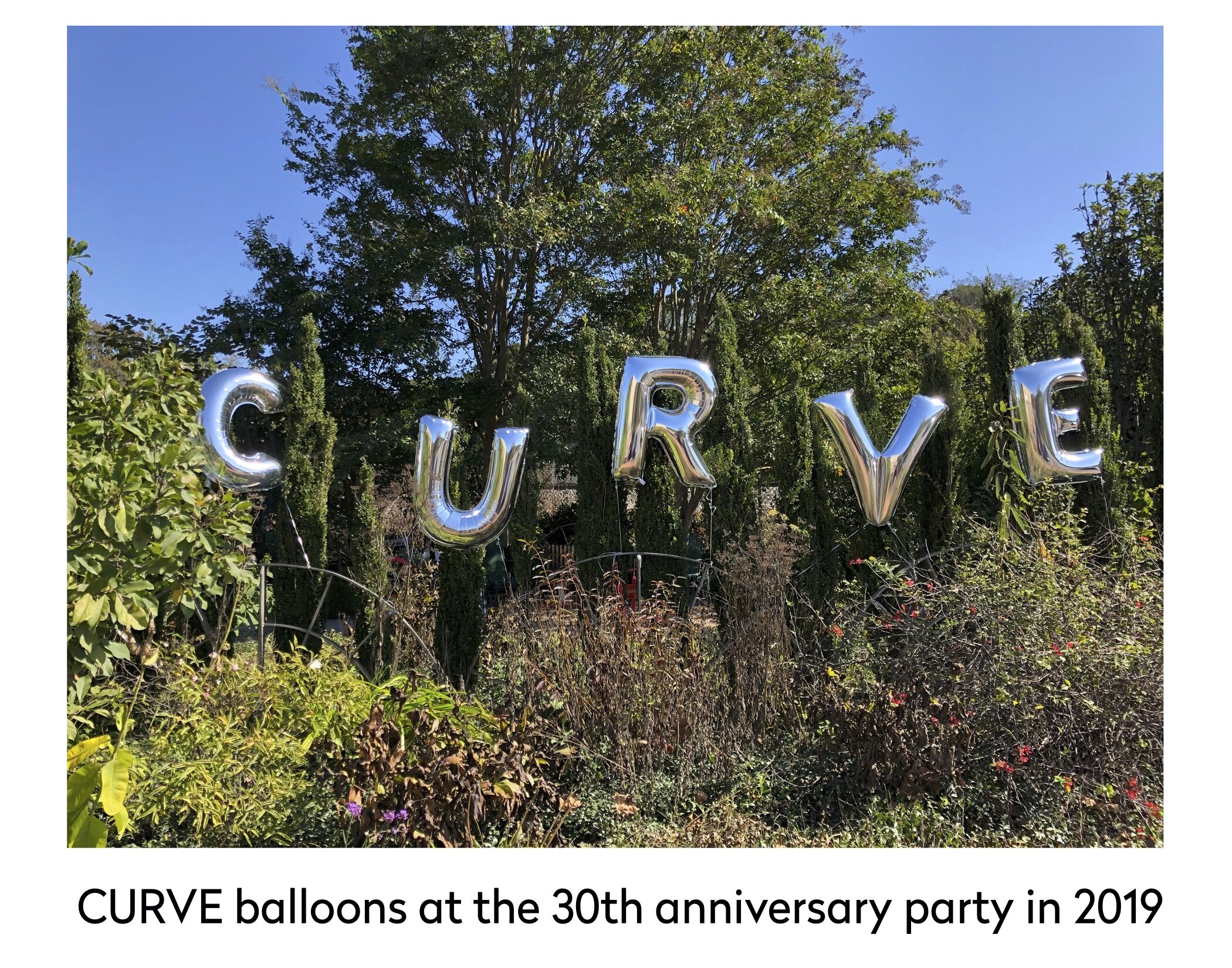 curve balloons 30 party 2019.jpg