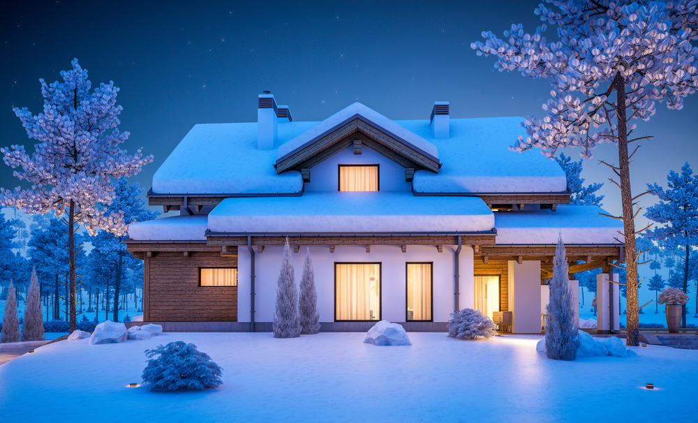winter roof.jpg