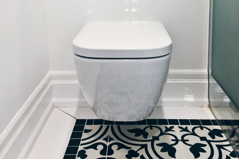 Wall Mounted Toilet.jpg