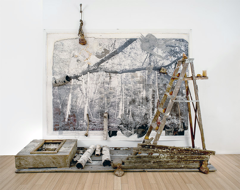 """""""She fell, he disintegrated, Black Flowers rained down as darkness descended"""", 10' x 10', sculpture memorial with fallen tree, photogravure, giclee print, graphite, charcoal, chalk, pastel, collograph, tarleton, wood, birch bark, wasp paper, rose petals, snake skin, latex, urethane, feathers, bone, dried tangerines and old ladder"""