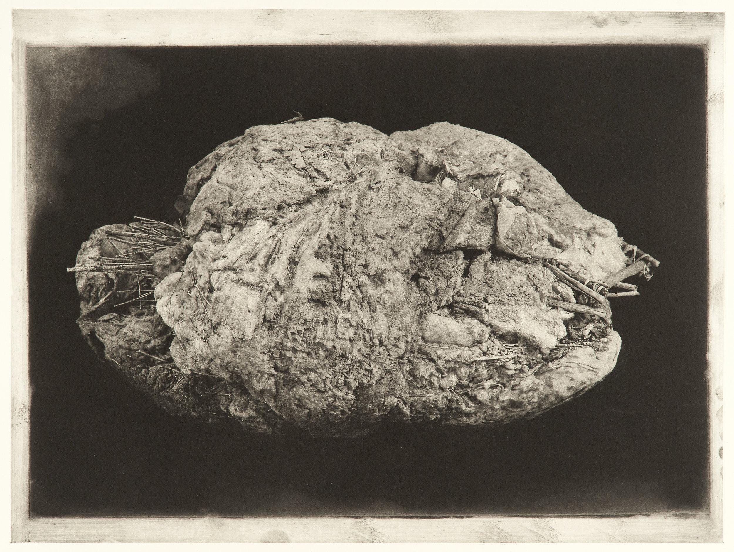 """Degeneration # 4489"", 22"" x 30"", photogravure of urethane sculpture weathered"