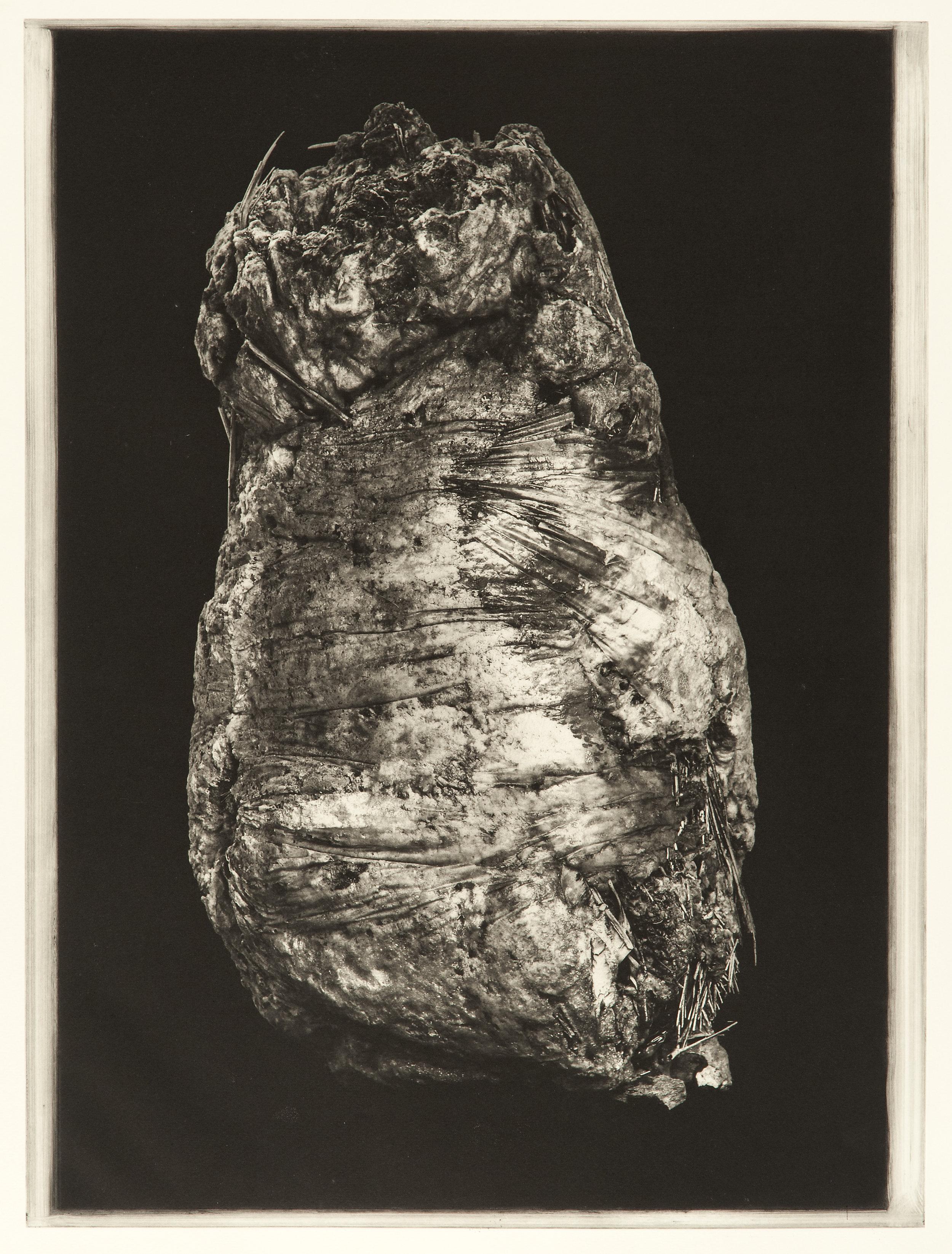 """Degeneration # 4475"", 22"" x 30"", photogravure of urethane sculpture weathered"