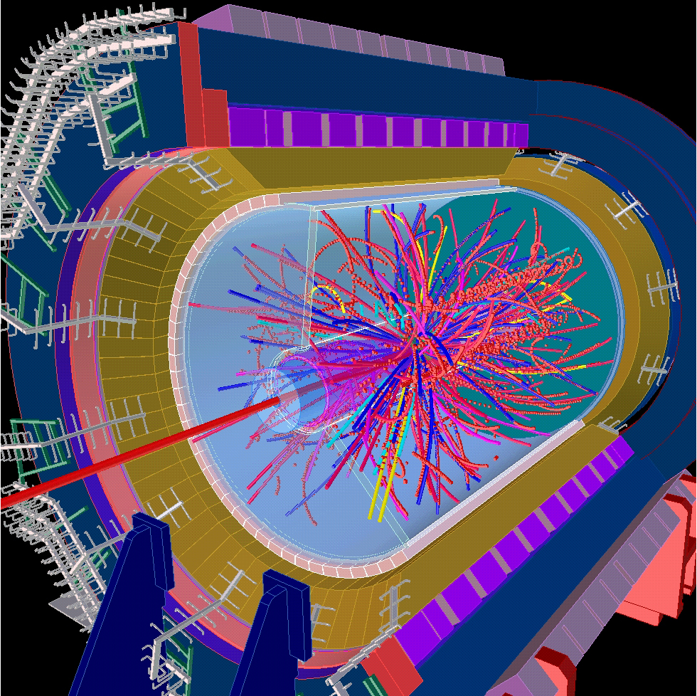Nuclear Physics Detector, 1998