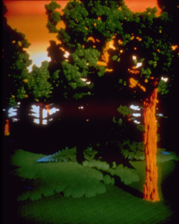 Fractal Forest, 1991