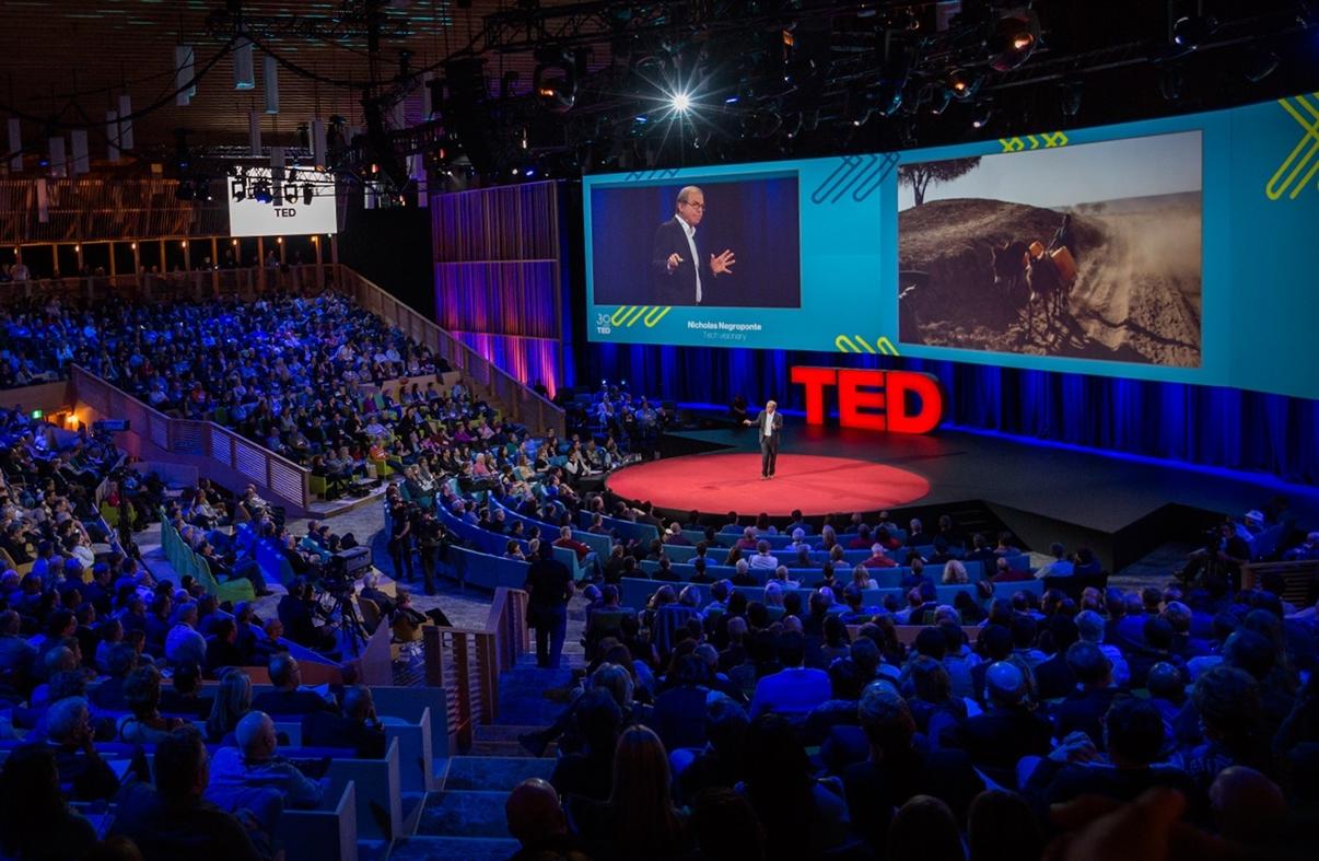 TEDstill2.jpg