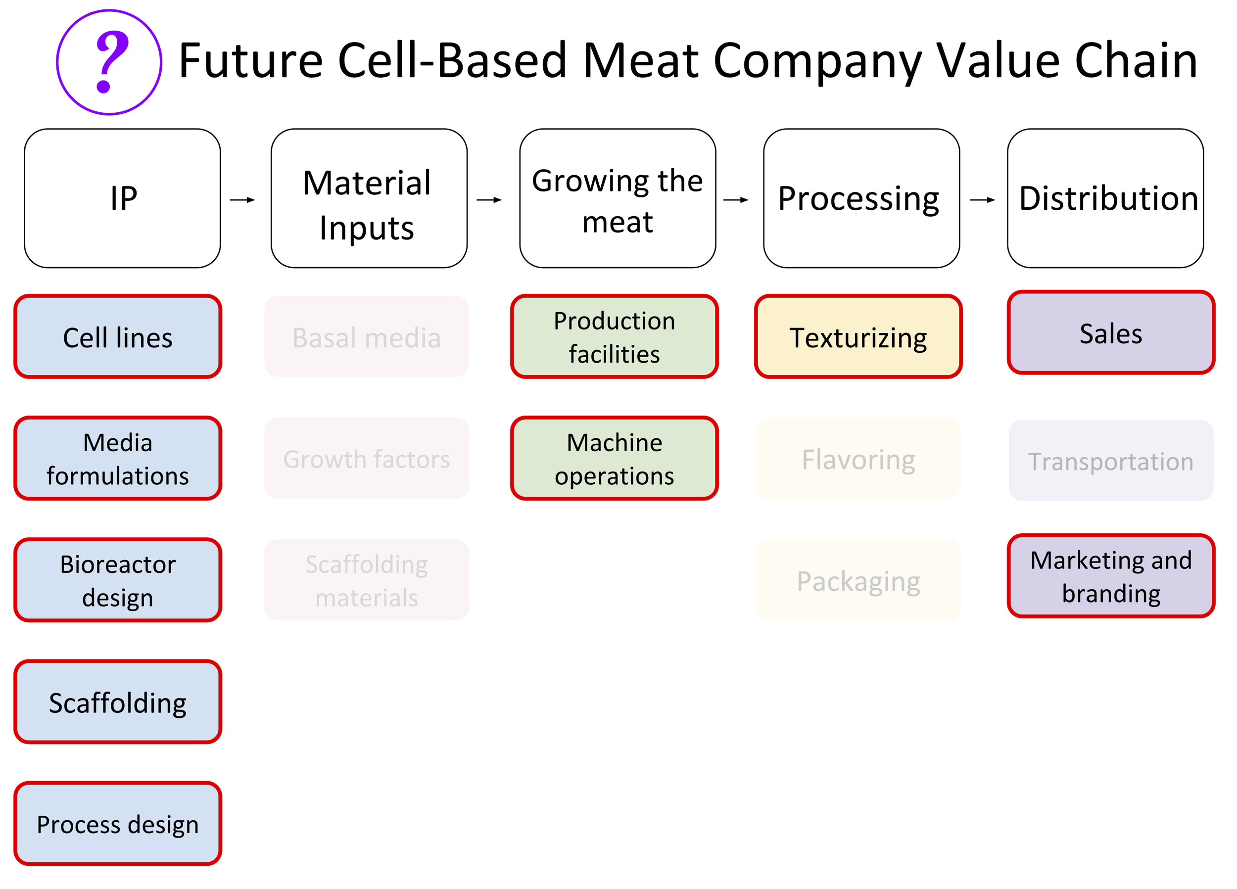 Future Cell-Based Meat Company Value Chain.jpg