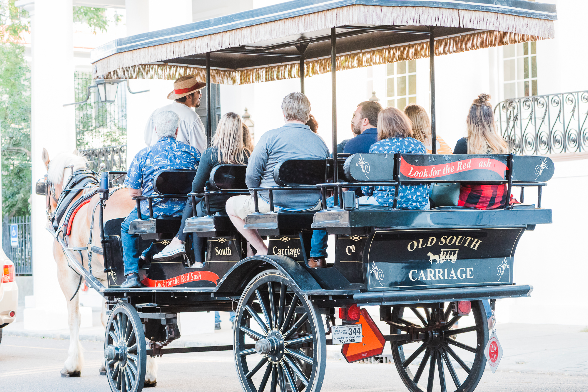 Carriage Tours-2.jpg