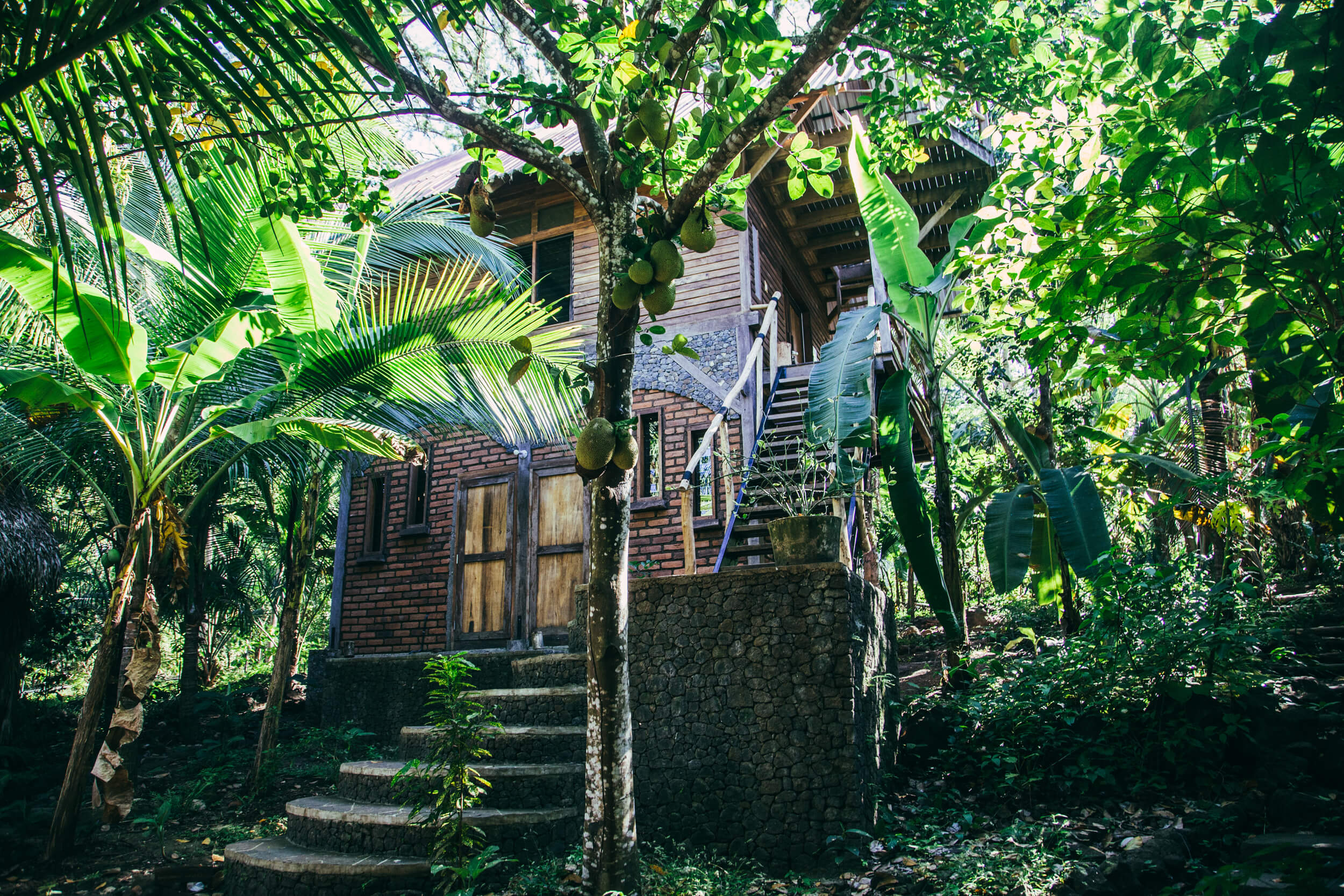Jungle_House-surrounding-exotic- fruit-forests
