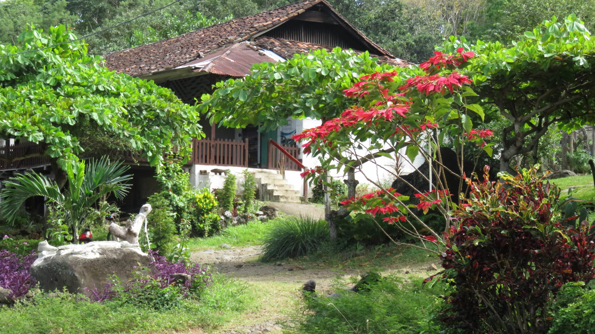 Finca Magdalena entrance, hiking trails, coffee plantations, petroglyphs Isla Ometepe