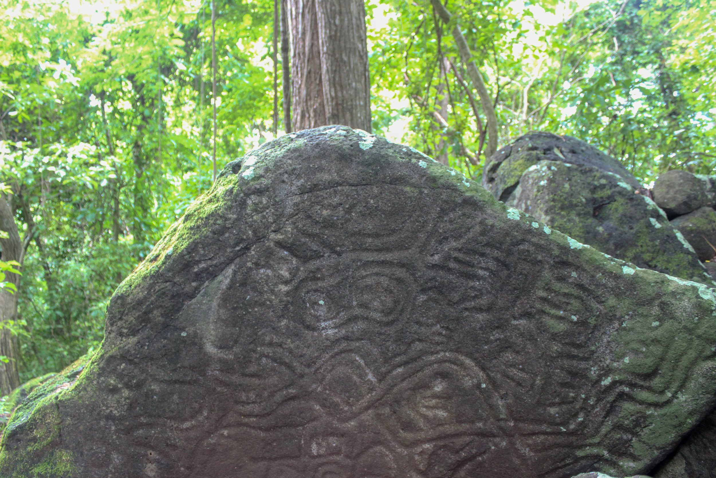 Ancient petroglyphs near Selvista Guesthouses