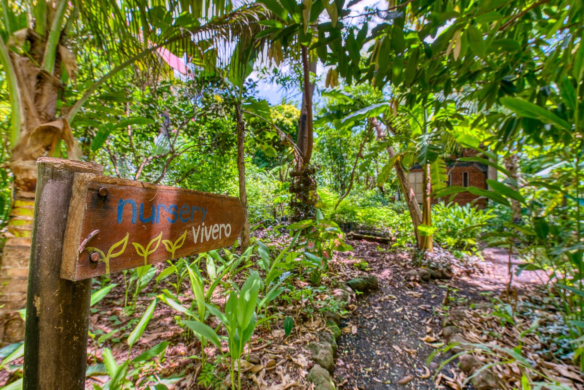 Selvista Plant Nursery entrance nestled among our guesthouses, Mango House and Jackfruit House.jpg