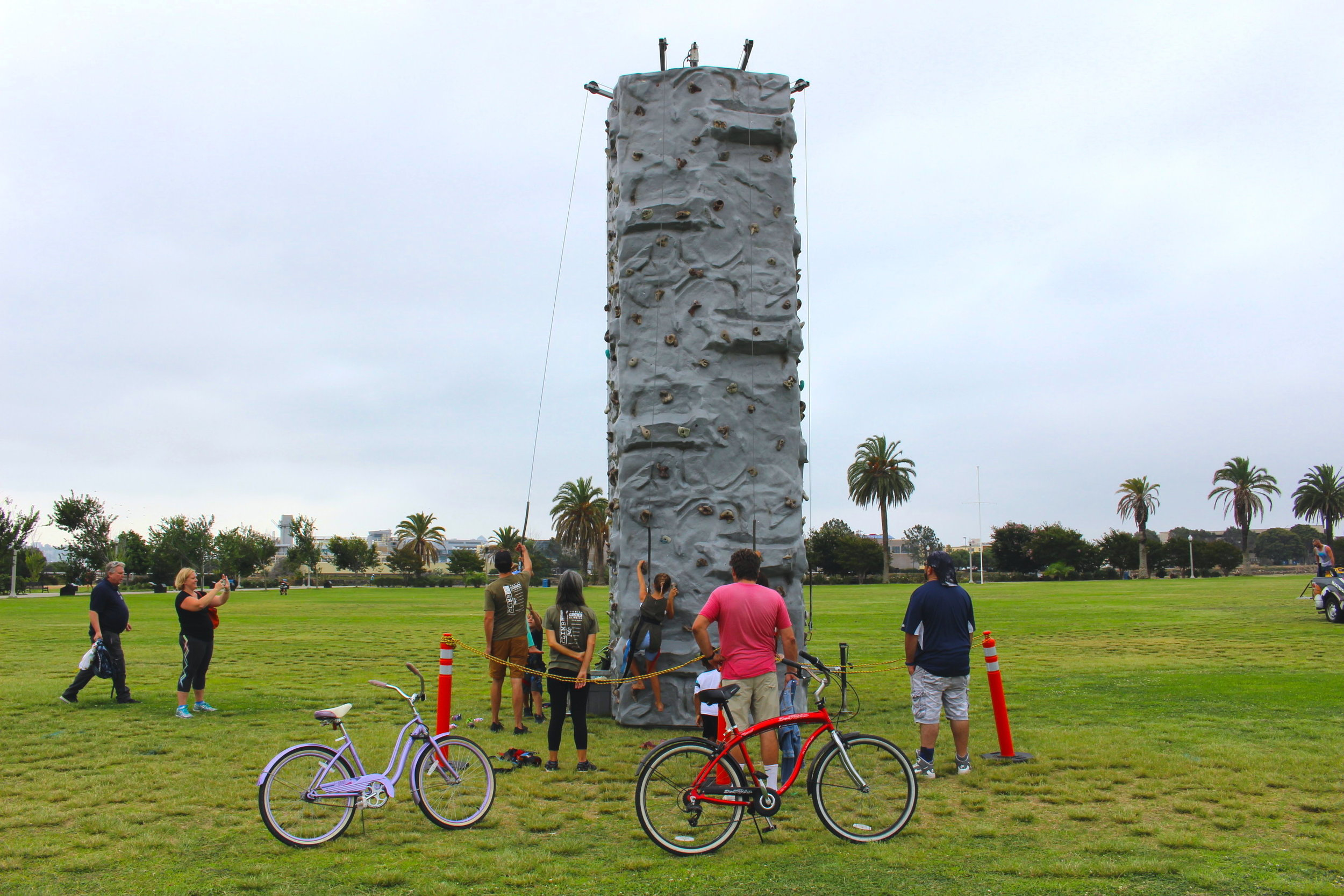 Rock Climbing Wall Full-size
