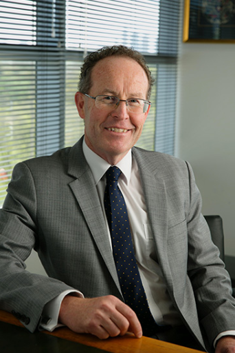 Professor Mark Fitzgerald - Co-chair/Alfred Health Representative