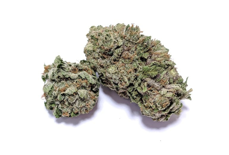 Gorilla Glue #4 - Hybrid    1/4- $60 1/2-$110 OZ-$200   Gorilla Glue #4 (also known as GG4) created by GG strains is a Sativa-dominant hybrid, a multiple award-winning strain, famous for its high THC content. It averages 18 to 25 percent THC, but you may find it as high as 32 percent at some dispensaries. The CBD is very low, ranging between 0.05 and 0.1 percent. This strain gets its name because of the resin that collects on the scissors when trimming. Gorilla Glue #4 has several parents due to extensive backcrossing Sour Diesel, Sour Dubb, Chems Sister, and Chocolate Diesel. The hybrid strain has won awards at the 2014 Cannabis Cup in both Los Angeles and Michigan. It has been described as a bunch of trichromes with a few buds, leaves, and stalks sticking out