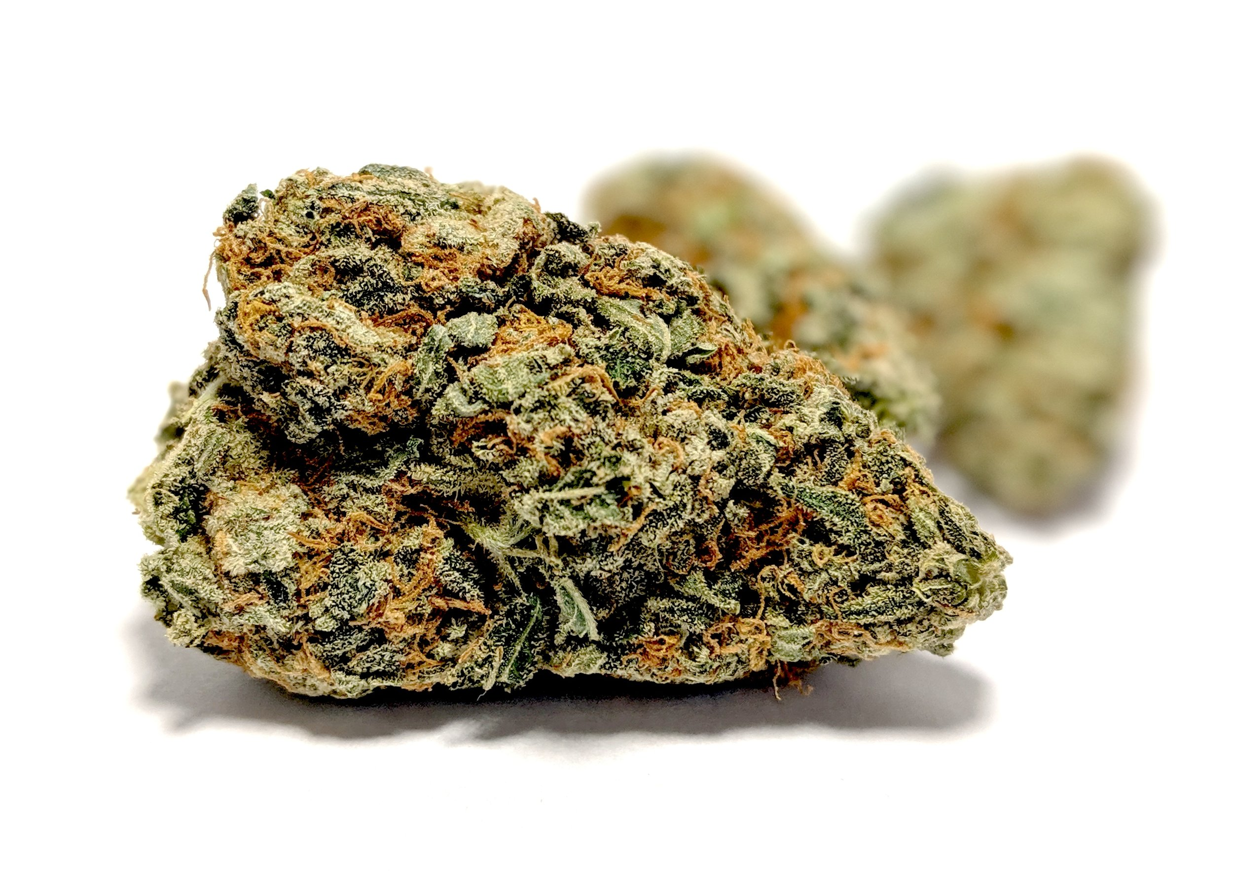 Krazy Glue - Hybrid    1/4- $65 1/2-$110 OZ-$200   Despite its name, this sativa dominant strain wont leave you stuck to the couch at all! This hybrid carries a lot of traits from its Gorilla Glue parent, including similar appearance and flavor profile. This strain shines best when high potency is needed without the heavy feeling of an Indica. This strain has been known to help alleviate the following symptoms: Pain, Anxiety, Stress, Fatigue, Insomnia, Nausea, Appetite, and Depression