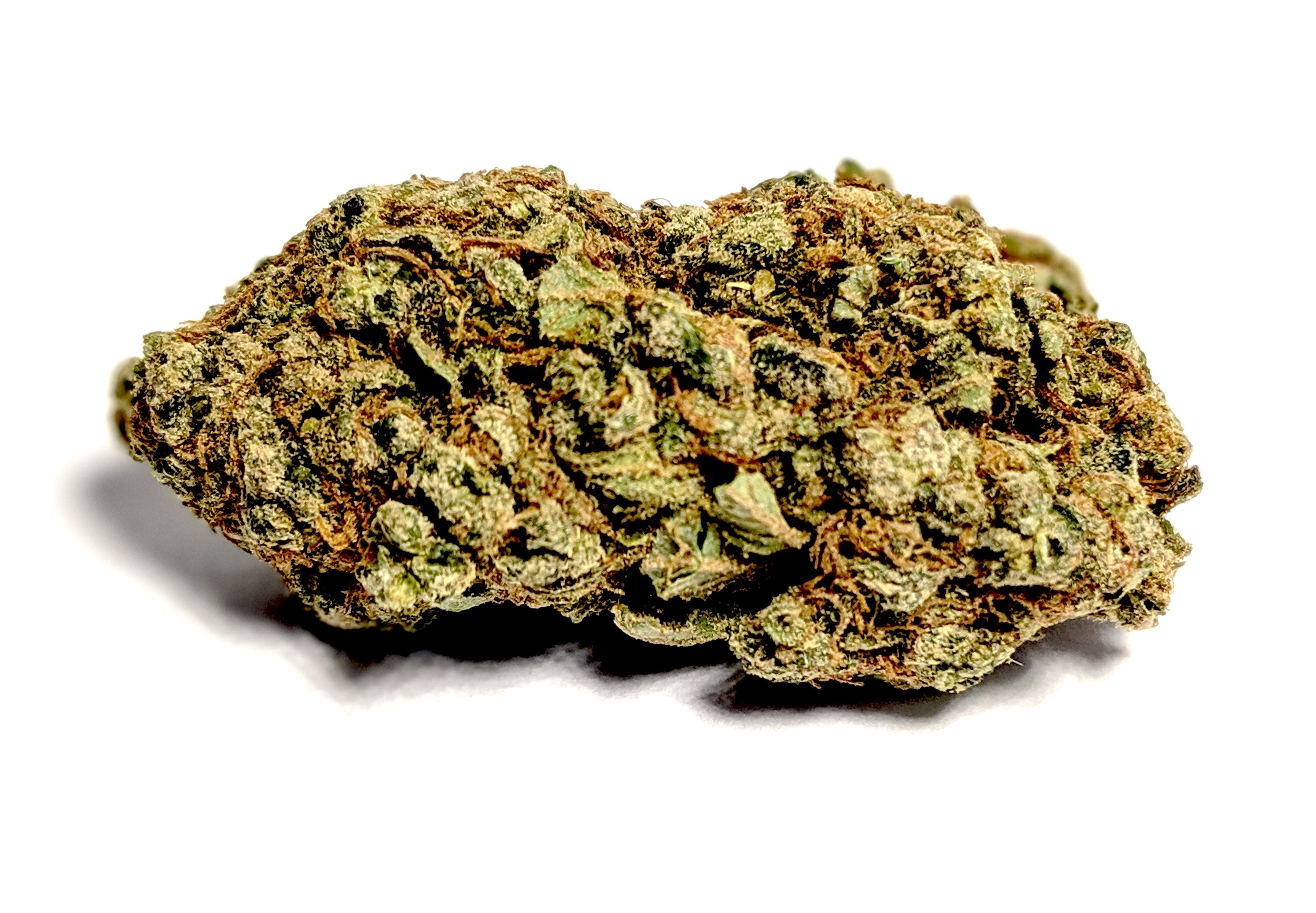 G13 - Indica    1/4- $55 1/2-$95 OZ-$160   G13 is a very strong strain of cannabis indica that is the subject of many urban legends. According to some accounts, the CIA, FBI, and other agencies gathered the best strains of marijuana from breeders all over the world. At a super-secret installation at the University of Mississippi, they bred many new super hybrids in the late 1960s. Allegedly, a single cutting of this plant was liberated by an unnamed technician and bred for the masses. Although the legends are probably not true, G13 delivers effects like no other. If you have the opportunity, definitely partake in this strain.