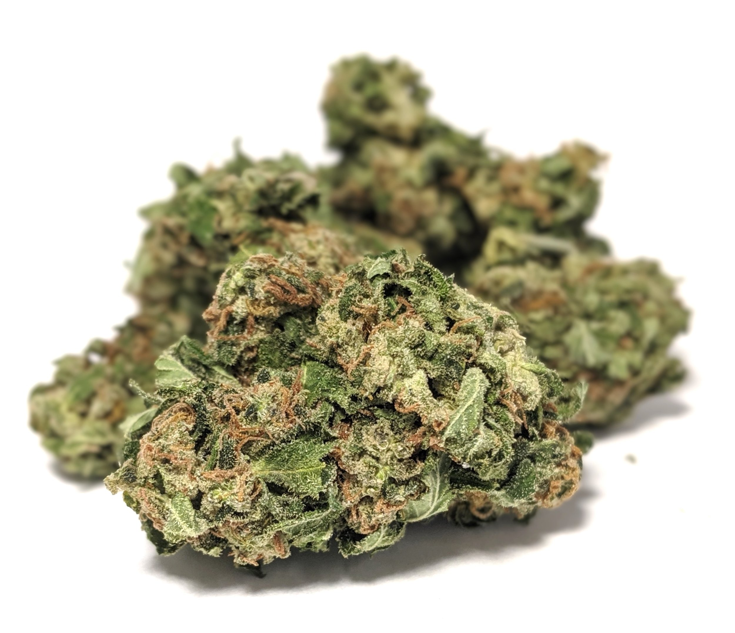 Sapphire OG- Indica    1/4- $50 1/2-$90 OZ-$160   Bred by Humbolt Seed Organization and grown by Gold Leaf, this indica smells like an amazing blend of petroleum, pine, chocolate, citrus and flowers. The buds have dense calyx formations with dark hues of green and purple covered in a layer of trichomes, with orange hairs that seem to be escaping the buds. The effects are both mental and physical, starting with a pleasant euphoria producing effect and finishes with a nice feeling of relaxation.