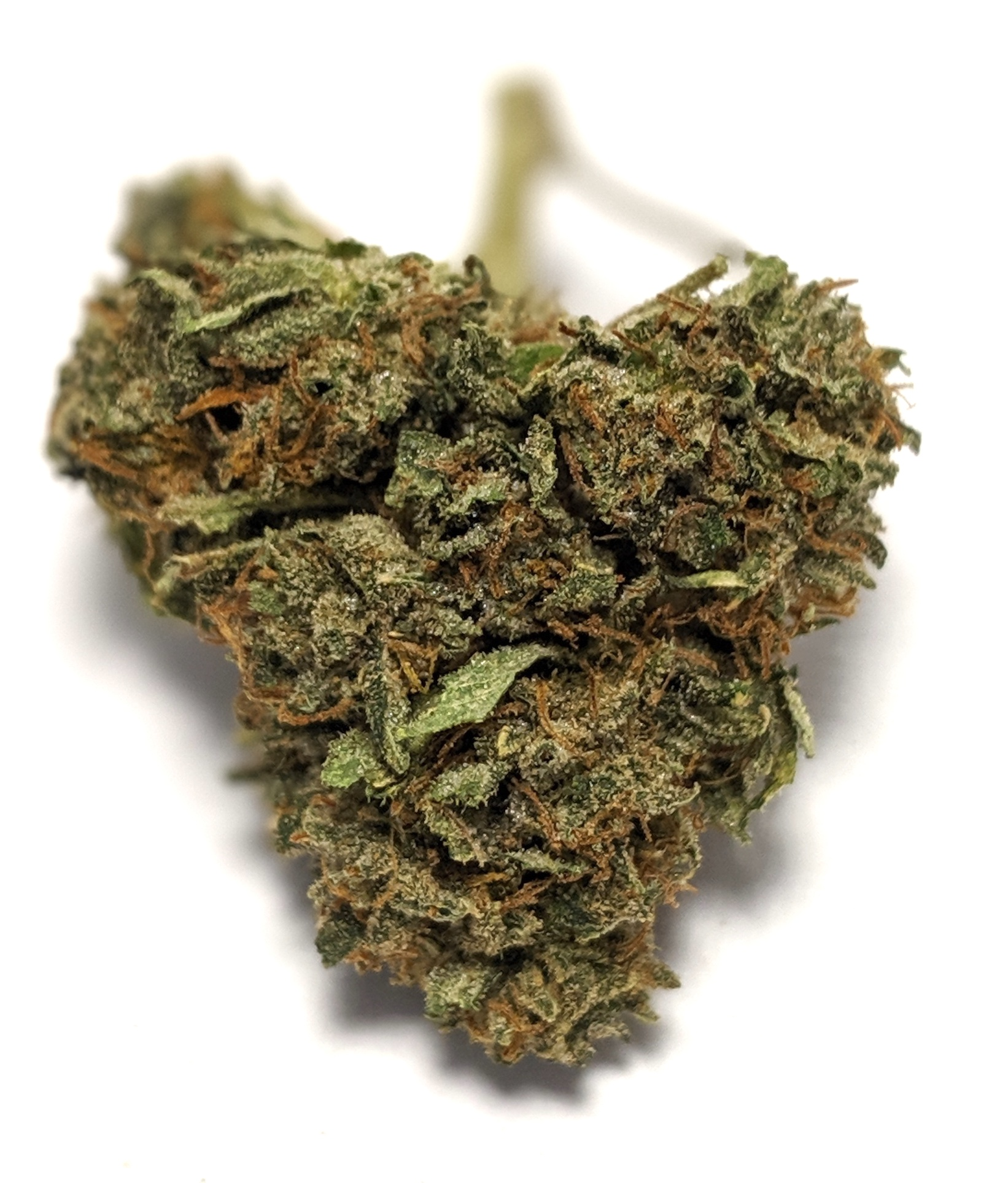 Sour OG - Hybrid- OZ SALE!!!    1/4- $50 1/2-$90 OZ-$145   Sour OG is a 50/50 hybrid strain that is a real favorite among those who love a balanced sativa/indica buzz. As a cross of two of the most popular and widely available strains in the world (Sour Diesel and OG Kush), Sour OG has been available in clone and seed form for quite some time. Most samples express dense, round, OG Kush-type buds laden with large, sticky trichomes. The odor and taste are usually an equal mix of both parents, with sour lemon, pine, fuel, and a distinct kushy undertone, although some versions have a more fruity profile. Often described as a one-hit-quit strain, Sour OG starts with an energetic head high that gradually gives way to a relaxing body stone.