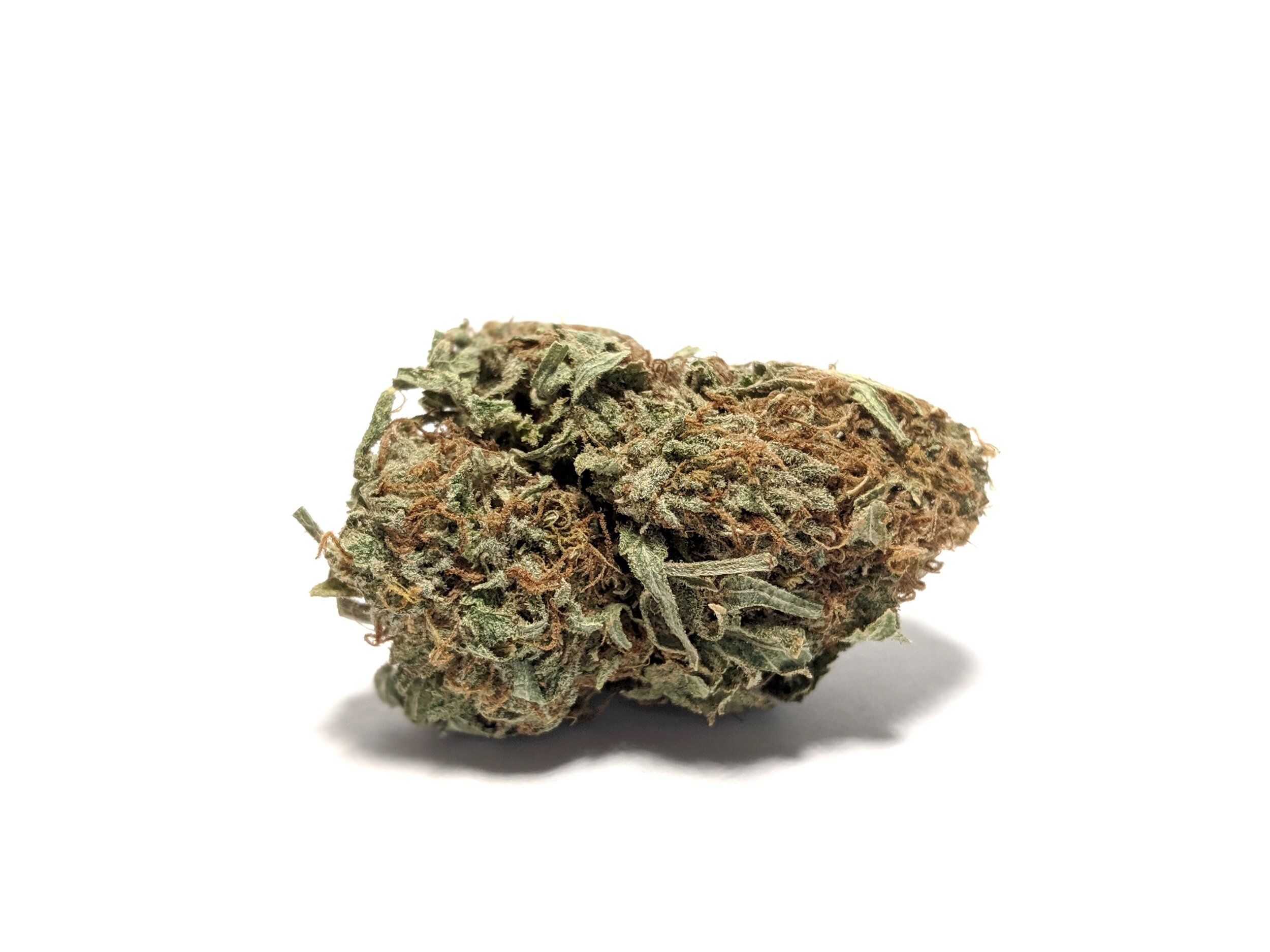 Kosher Kush - Indica    1/4-$50 1/2-$95 OZ-$150   Kosher Kush, offered now in seed form from  DNA Genetics , originated in Los Angeles as a clone-only strain. Winner of  High Times  Cannabis Cup's Best Indica in 2010 and 2011, as well as Best Strain in 2011, Kosher Kush produces staggering levels of THC, with some samples testing over 29%. Known as one of the most odiferous  OG Kush -related strains, it has a unique yet familiar smell reminiscent of rich earth and fruit, and is considered by many to be one of the tastiest smokes around. The high experienced is typical of many heavy indica strains, producing pronounced relaxation and pain relief, with sleep often following close behind.