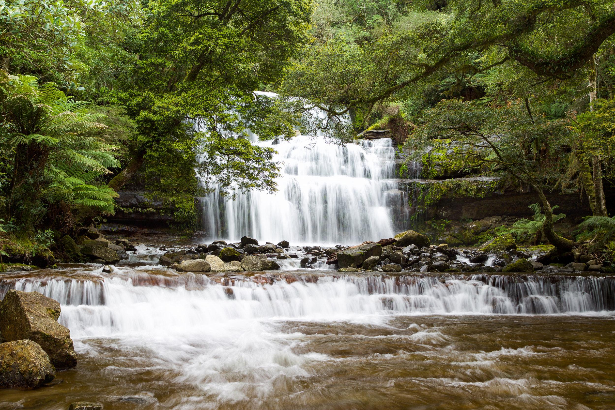 Liffey Falls-0252.jpg