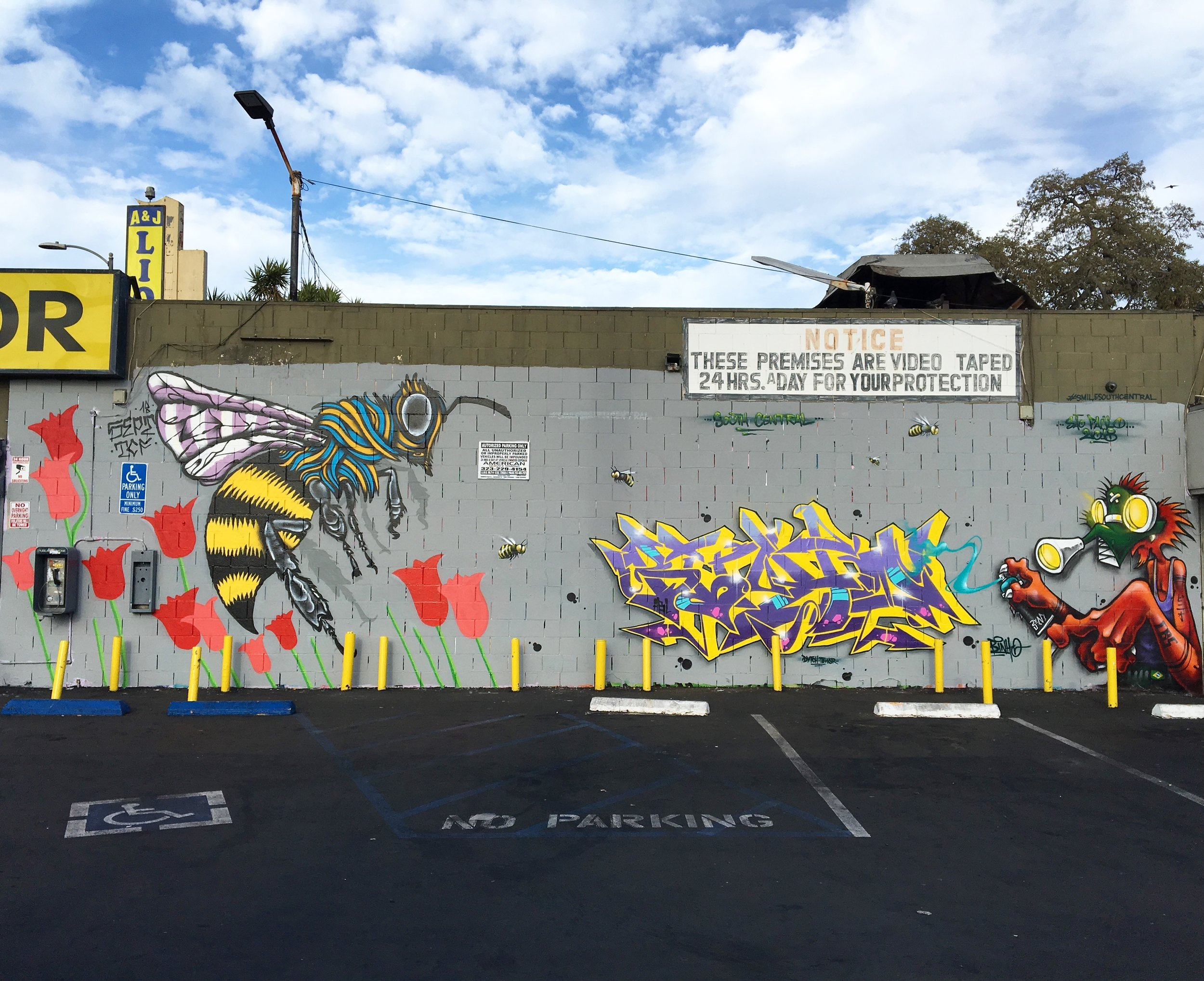 Collab with Binho CBS@binho3m for Smile South Central @smilesouthcentral