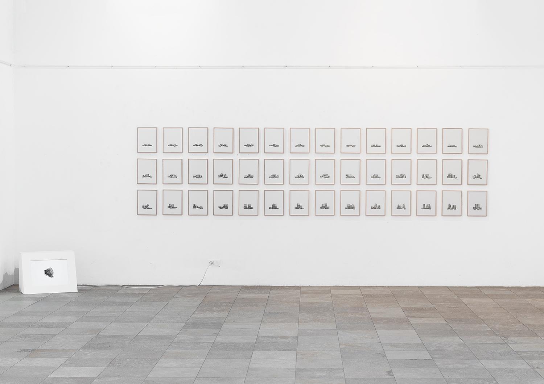 Juergen Bergbauer, Installation View, Studies after Nature