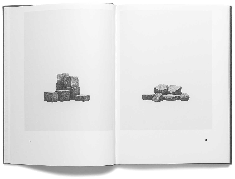 Studies after Nature (Book)