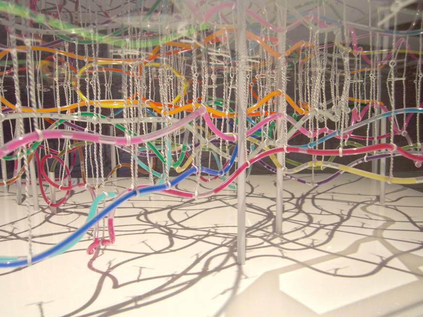Ant nest: Takatsugu Kuriyama used water hoses and multicolored ink to create a 3-D map of the underground railway lines in Tokyo.