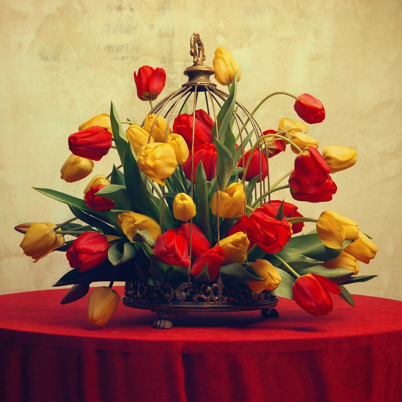 """""""Tulips"""" 60x60cm"""