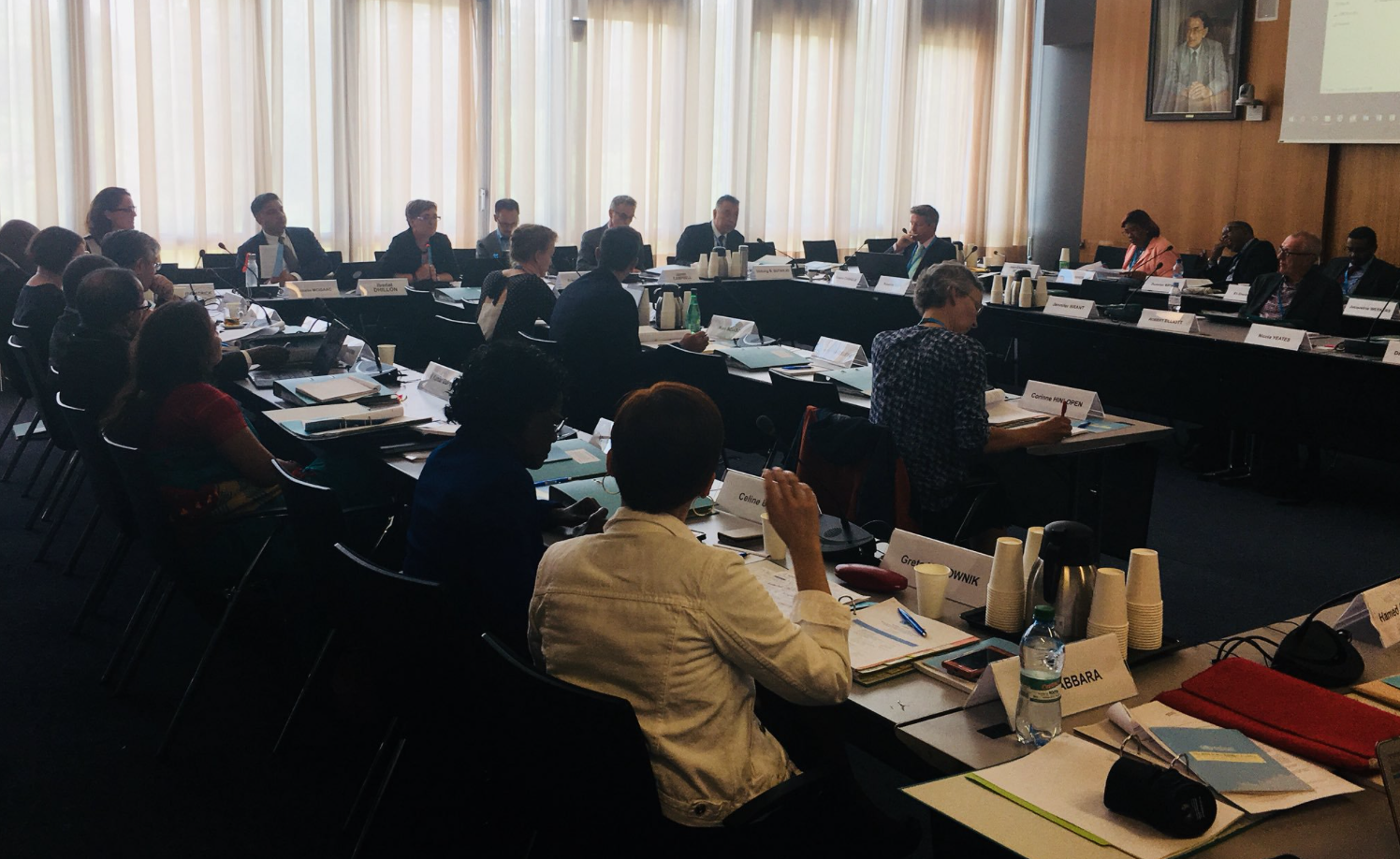 First public hearing of the Expert Advisory Group to review the WHO Global Code of Practice on International Recruitment of Health Personnel on June 18th, 2019