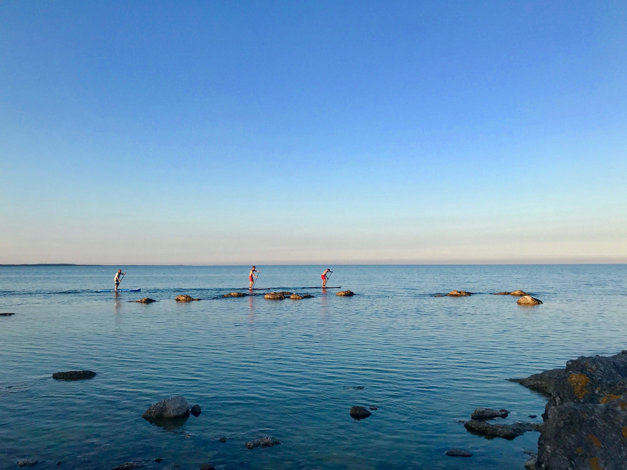 Evening Stand Up Paddle board adventure, Bruna Dörren Activity Center, Gotland, Sweden
