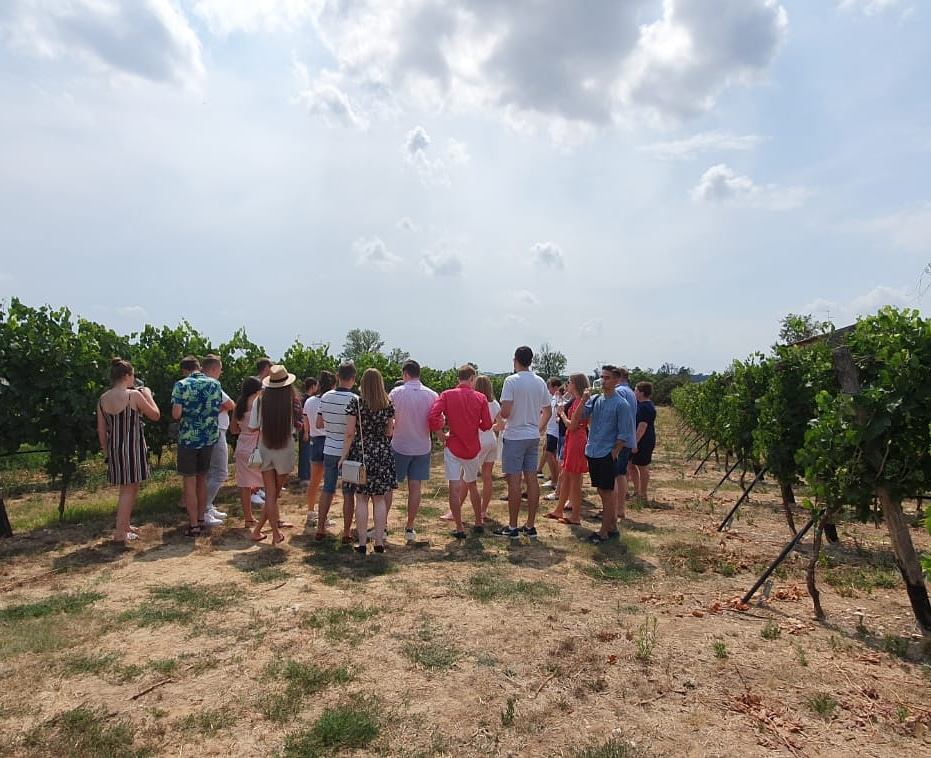 Always great moments during vineyards tour! - Click here to book your Wine Tasting Experience!