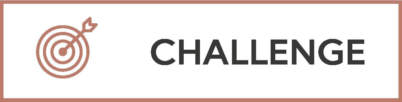 Mav_Process Diagrams_Challenge_Transparent_AW.png